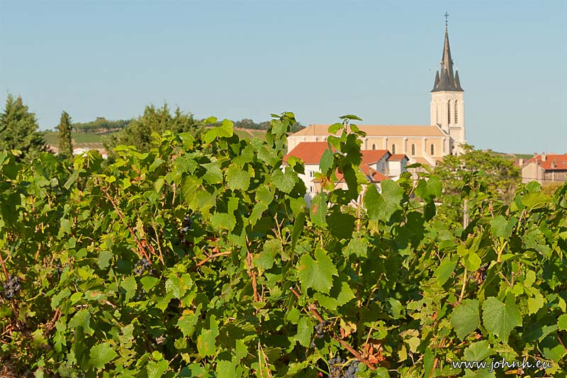 Fleurie church across the Beaujolais vineyards