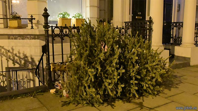 Christmas tree awaits recycling