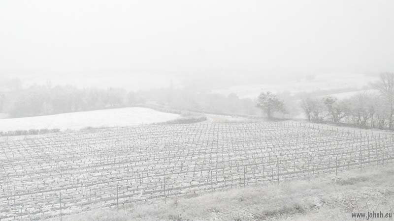 Vineyards in the snow near Macon