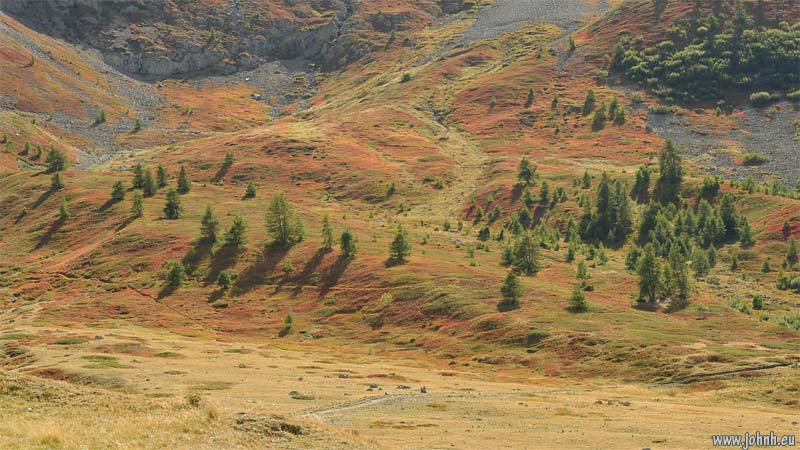Autumn colours at the Col du Lauteret