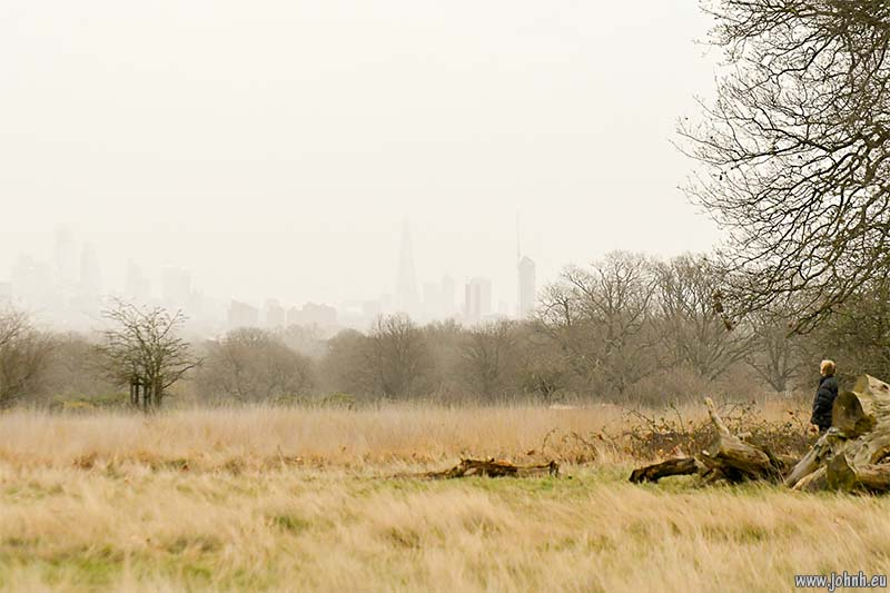 City of London, viewed from Richmond Park