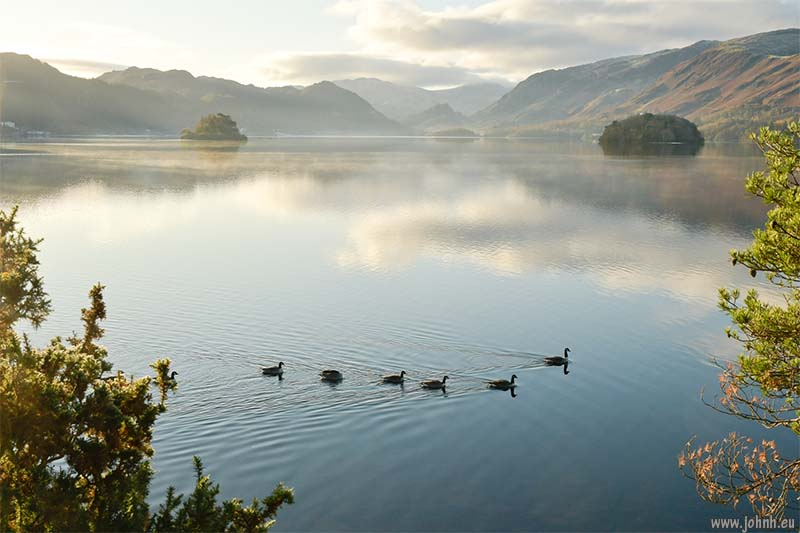 Geese on Derwent Water as the sun breaks the horizon on the last day of November