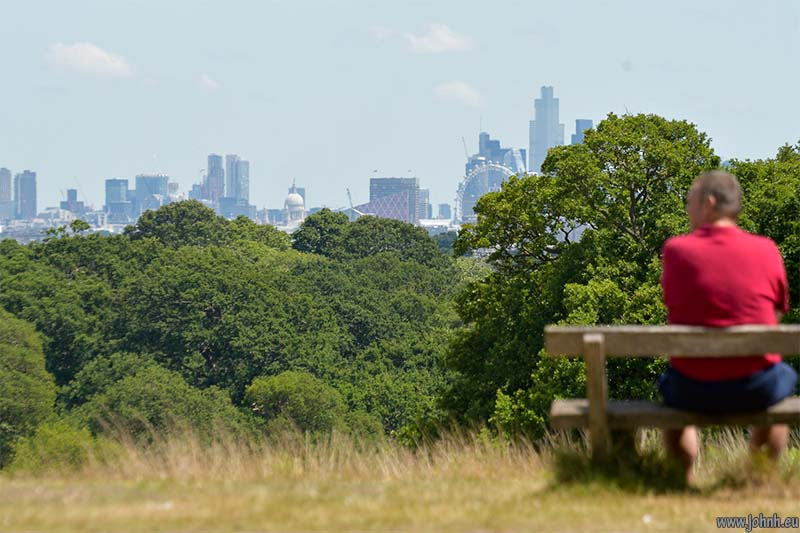 Sawyers Hill, Richmond Park, SW London