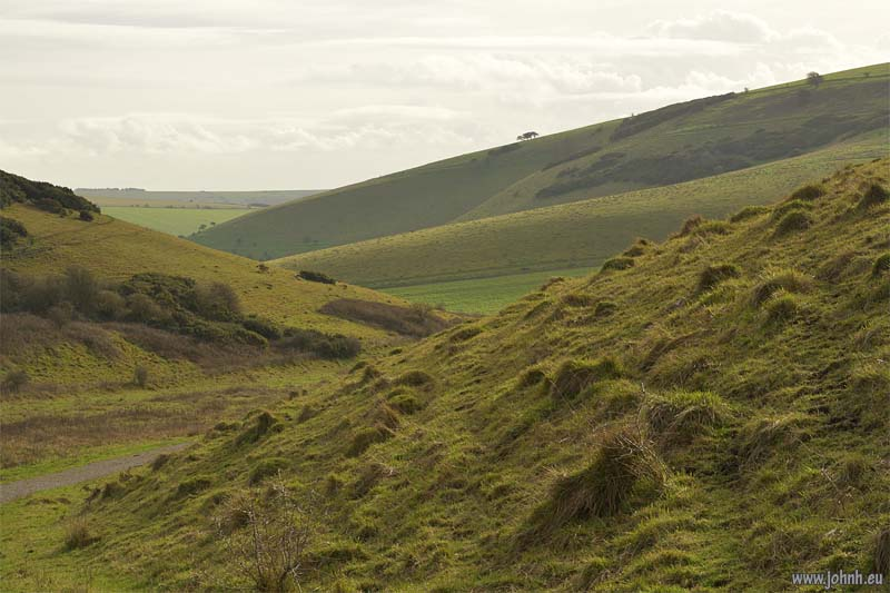 South Downs National Park in Sussex