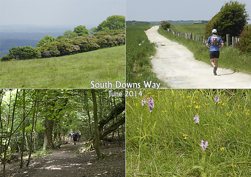 My photos of the South Downs Way in Sussex