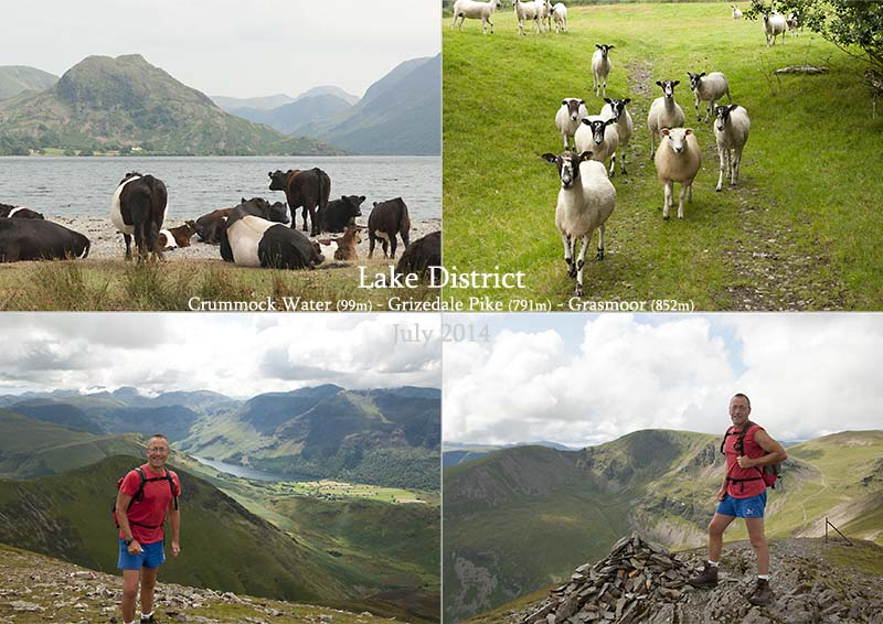 Postcard from Grizedale Pike and Grasmoor