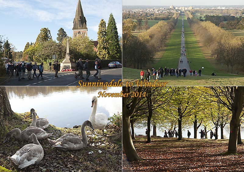 Postcard of my photos from an autumn walk from Sunningdale to Windsor in Berkshire.