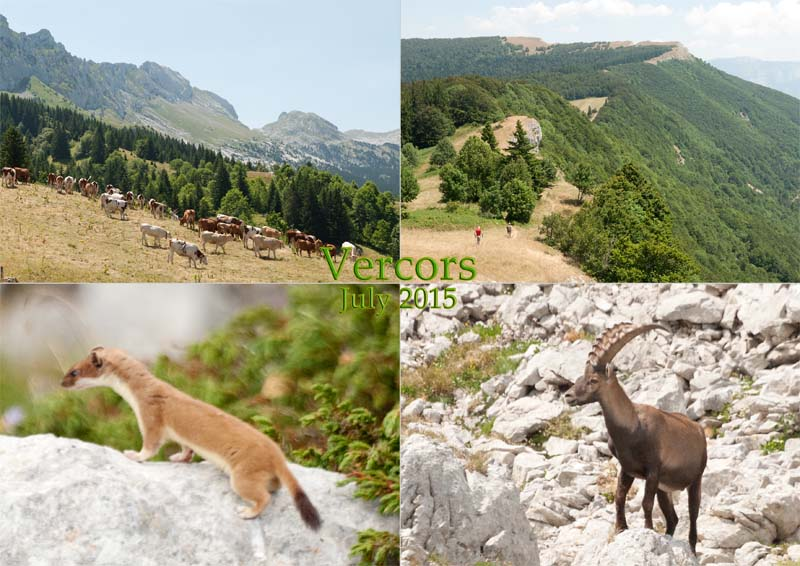Hiking around Villard-de-Lans, Vercors