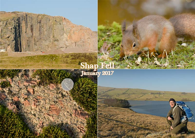 Shap Fell, red squirrels, granite and a high hike