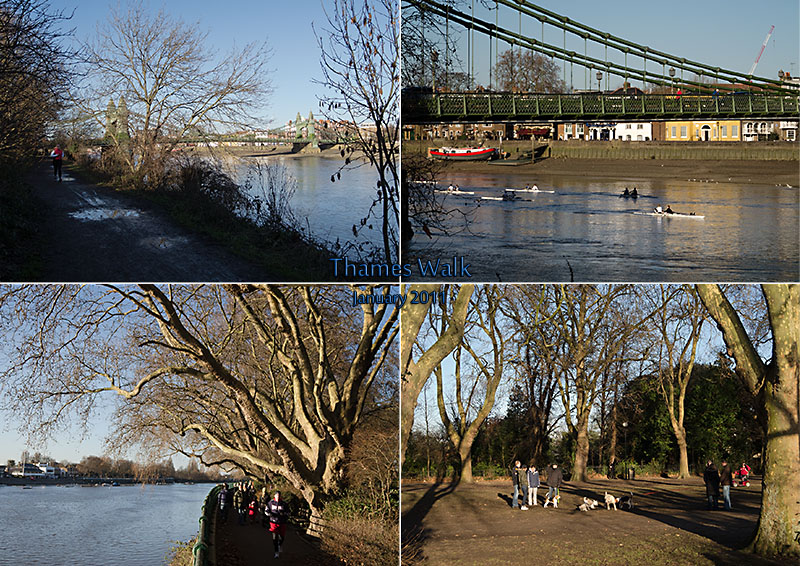 Views of the river Thames between Hammersmith Bridge and Putney Bridge, London