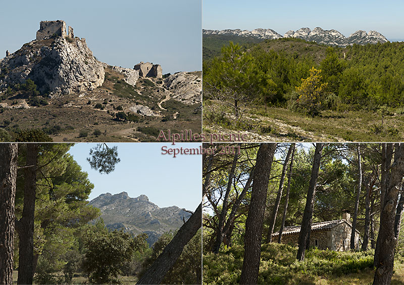 Postcard from our picnic in the Alpilles