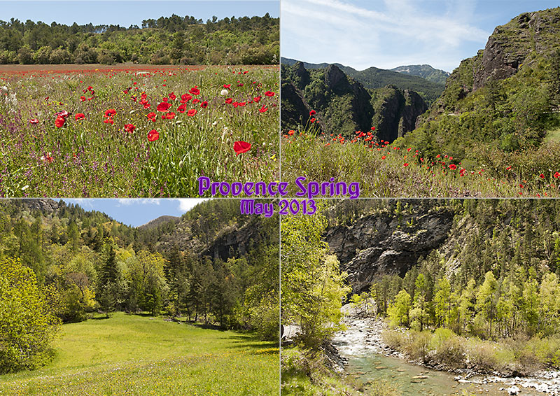 Postcard of my photos of spring in the Alpes-de-Haute-Provence